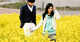 Đảo Cheju trong phim Boy Over Flower