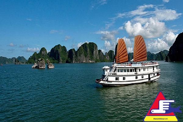 Có nhiều du thuyền đẳng cấp khác nhau từ 3 sao đến 5 sao với nhiều mức giá để phục vụ đa dạng nhu cầu của khách du lịch