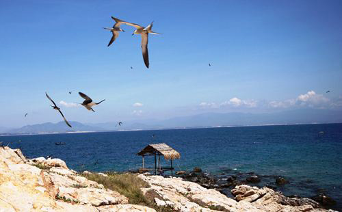 Nét hoang dại đầy yên bình tại Đảo Yến