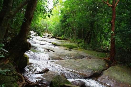 Dòng suối trải dài bắt nguồn từ dãy Hàm Ninh